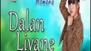 DALAN LIYANE - HENDRA KUMBARA | COVER AKUSTIK