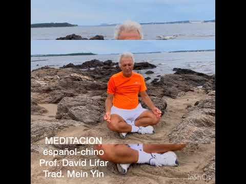 meditaciÓn españolchino de profdavid lifar  youtube