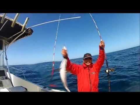 Cod, haddock, pollock, redfish fishing Maine 5/05/2013 Jigging with Kilsong