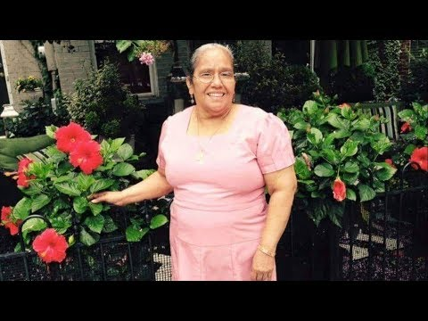 Tributo para mi Abuela // A Tribute to my Grandma