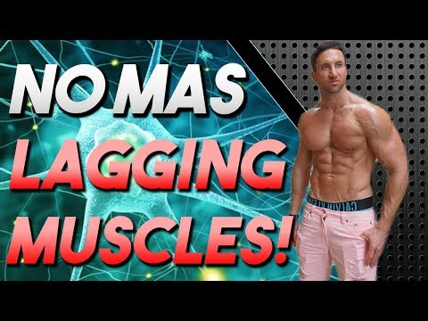 The FIX For Any LAGGING Muscle! (Guaranteed WAY BIGGER in 8 Weeks!)