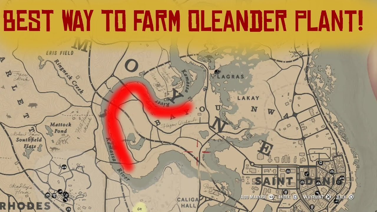 Rdr 2 Best Way For Gathering The Oleander Plant Red