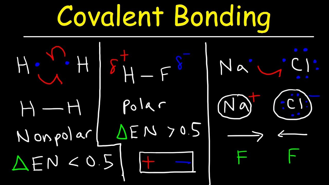 Practice Drawing Covalent Bonds
