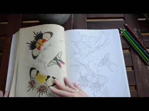 The Beauties of Nature Coloring Book - flip through