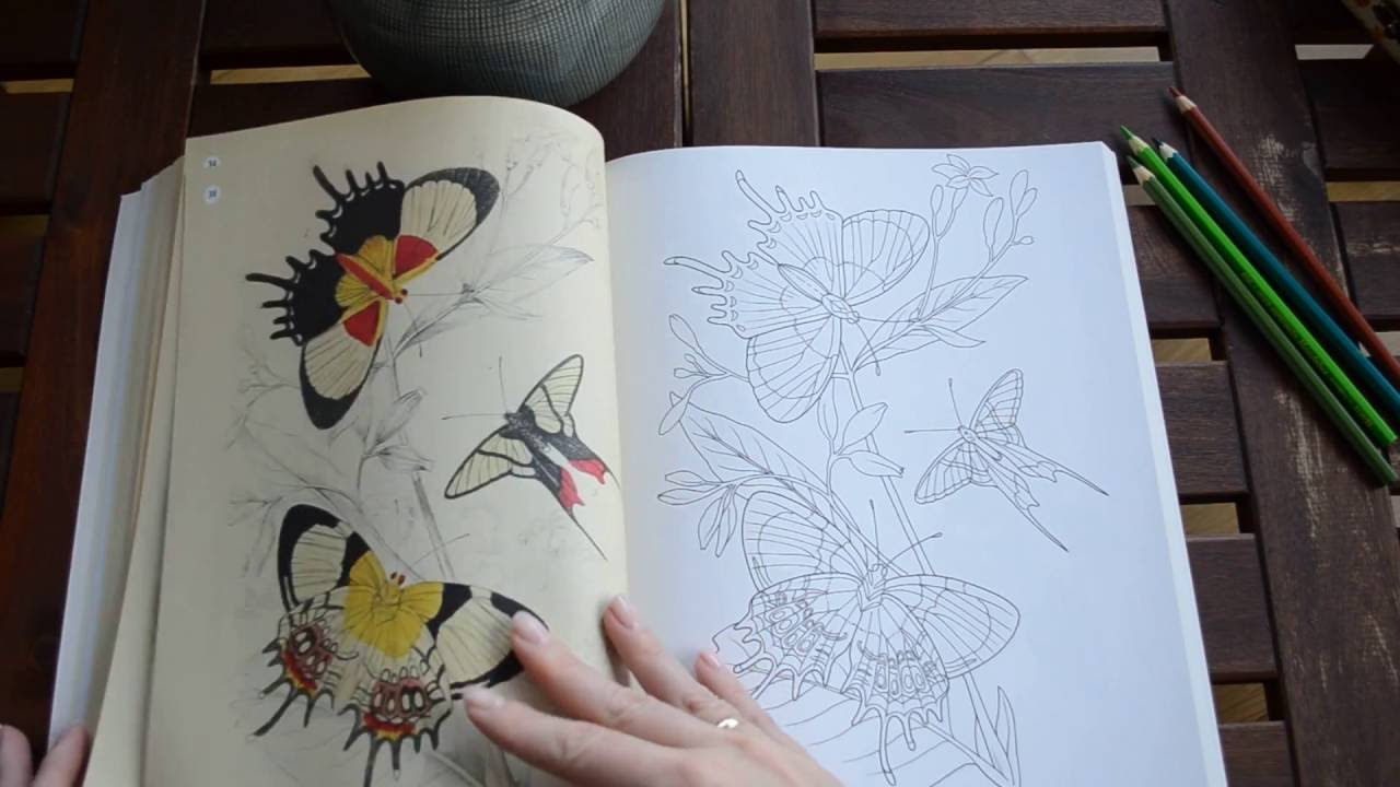 The Beauties of Nature Coloring Book - flip through - YouTube