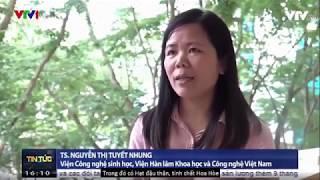 THỜI SỰ VTV1 Đưa Tin Enzylim Giảm Cân Lừa Đảo hay Hiệu Quả Xem Ngay