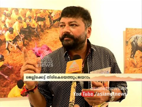 Jayaram (actor) supporting jallikattu