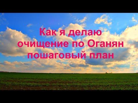 Цветы календулы — смотреть онлайн — КиноПоиск