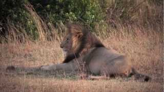 Africa Travel Co Tour Part 1 of 5