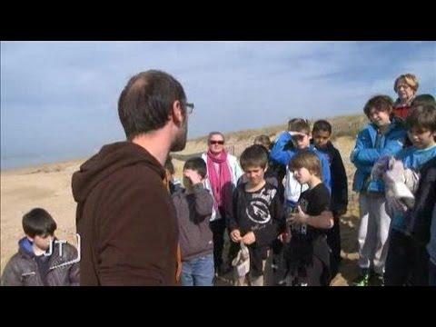 Opération « nettoyage des plages » (Vendée)