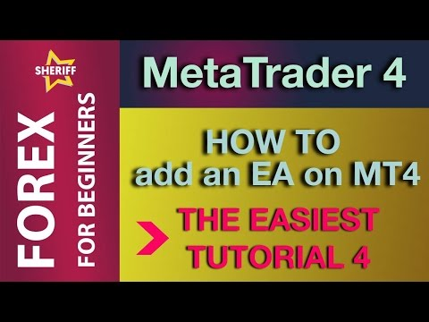 How to add an Expert Trader on MT4 Tutorial 4