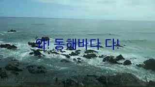 강릉 바다열차