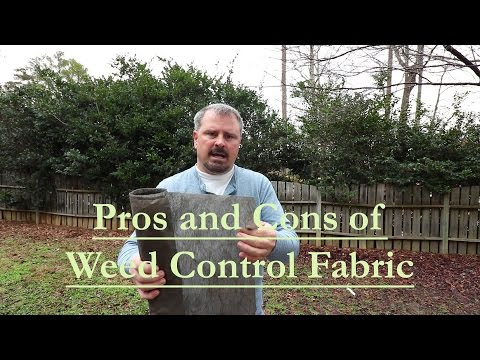 The Pros and Cons of using Weed Control Fabric (Landscape Fabric)