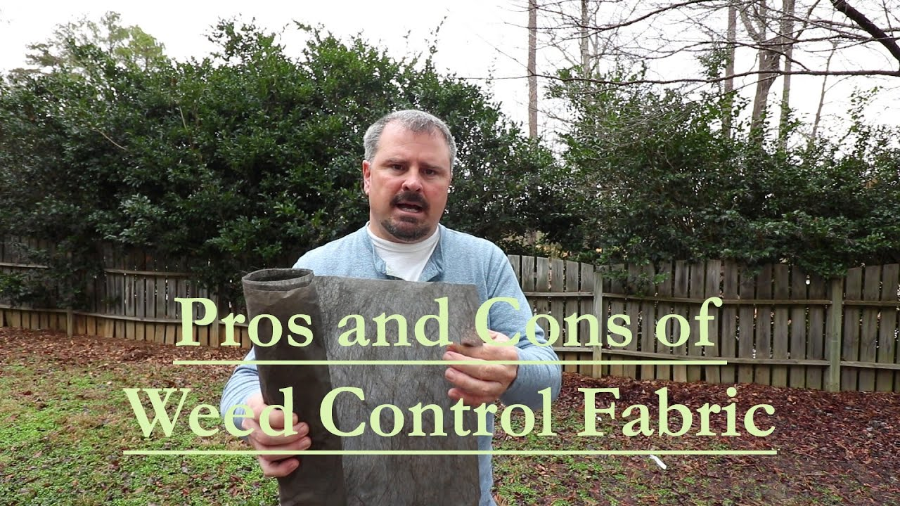 the pros and cons of using weed control fabric landscape fabric