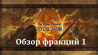 TES TOTAL WAR обзор фракций часть 1