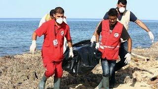 Десятки погибших мигрантов прибило к побережью Ливии (новости)