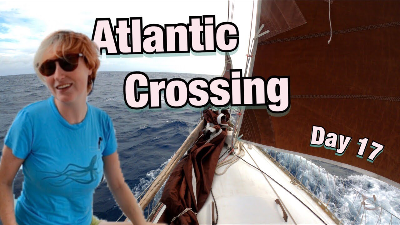 IT'S HAPPENING: Exciting Moment   Sailing Wisdom [S5 Ep29]