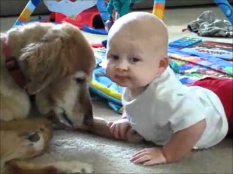 Bebek köpüşü ısırarak seviyor!