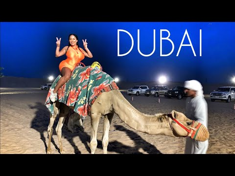 Dubai Travel Vlog