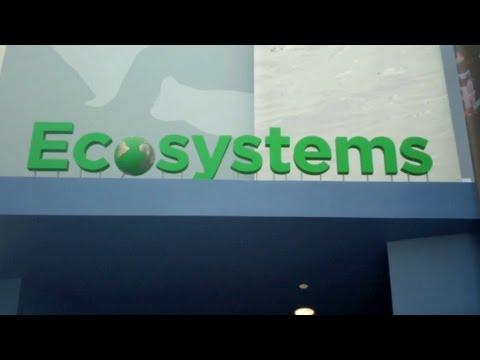 California Science Center vlog, Part 2 (Ecosystems)