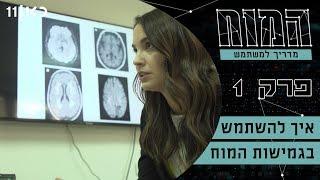 המוח 🧠- מדריך למשתמש | פרק 1 - איך להשתמש בגמישות המוח?