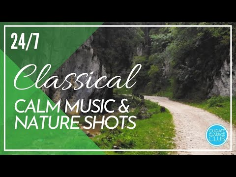 Calm Classical Music with Nature Shots 24/7: Liszt, Vivaldi, Chopin for Relaxing, Studying, Reading