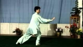 楊式40式太極拳背向演練