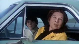 Harold e Maude - la patente [1971]