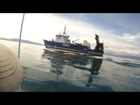 Sealord Boat Otakou