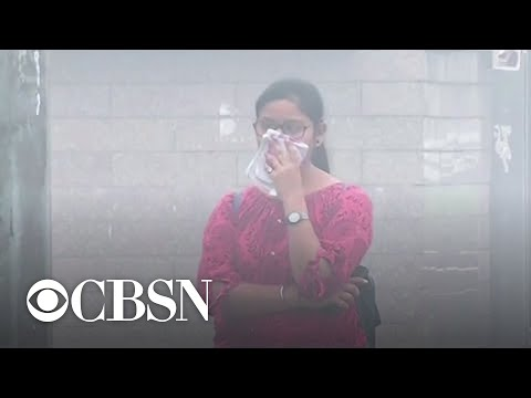 New Delhi's air pollution level triggers health emergency