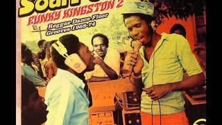 Shark Wilson and the basement heaters- MAKE IT REGGAE.wmv