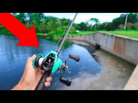 World's CHEAPEST Fishing Reel (WISH APP)