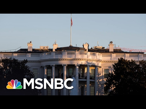 World Leaders View White House With 'Shock' And 'Worry' | Morning Joe | MSNBC