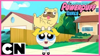 The Powerpuff Girls | Mini Compilation | Cartoon Network