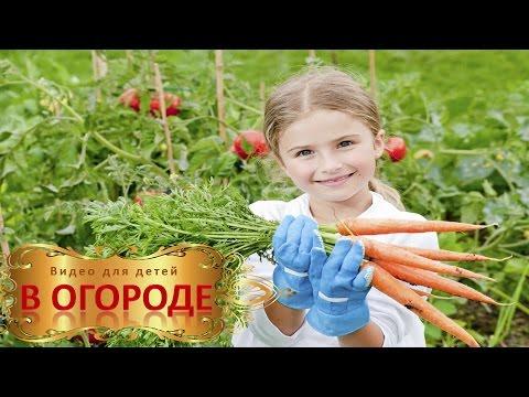 видео для детей знакомство с чайковским