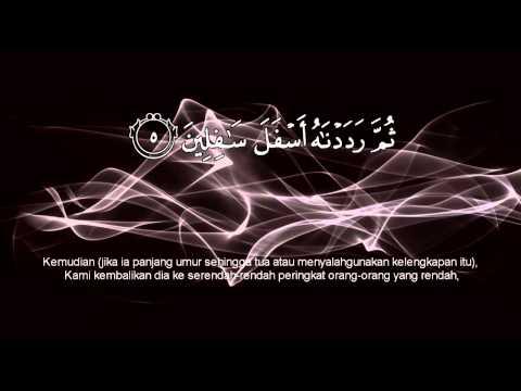 Al-Quran - Terjemahan Bahasa Melayu - Surah 95 At Tiin