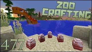 Plesiosaur Eggs!!  Zoo Crafting: Episode #477