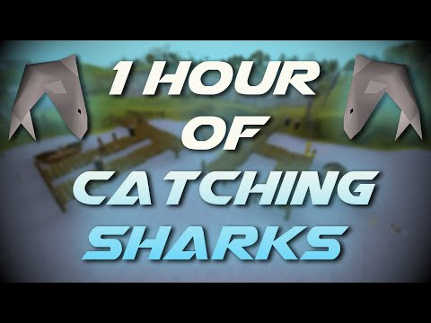 Catching Sharks | Testing OSRS Wiki Money Making Methods