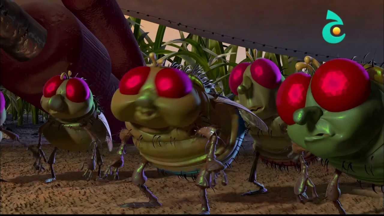 حياة حشرة عرض السيرك Youtube