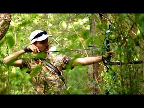 6 Elk & Moose Hunting Tips | Archery Lessons