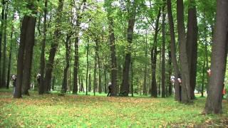 Волшебный лес. Клип