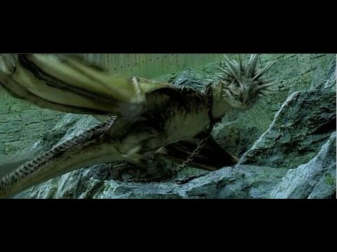 Harry Potter - How to train your dragon - YouTube
