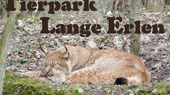 Tierpark lange Erlen in Basel