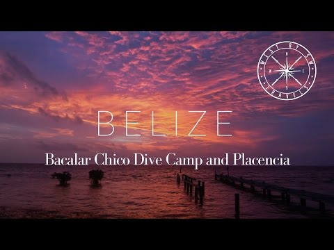 Belize: Bacalar Chico Dive Camp And Placencia #Lionfish Project