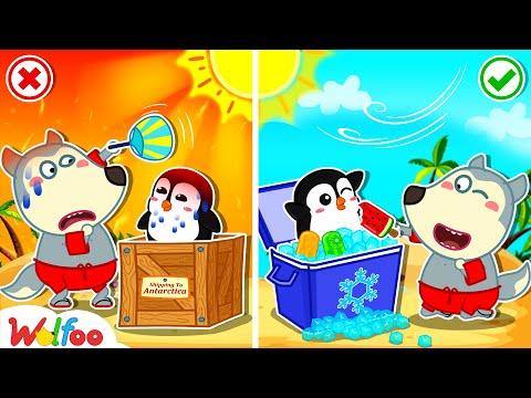 Wolfoo Has Fun Playtime on the Beach - Wolfoo and Hot vs Cold Challenge | Wolfoo Family Kids Cartoon