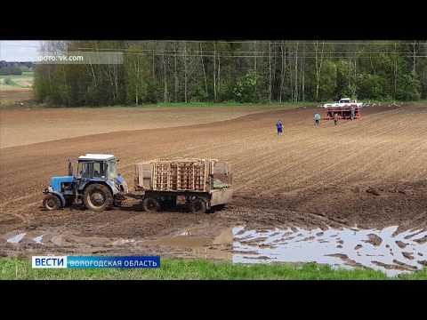 Более 10 районов Вологодской области готовятся к режиму ЧС в сельском хозяйстве