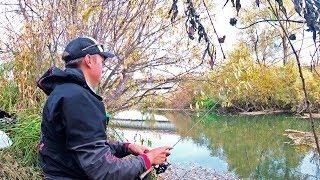 ЭТА РЫБА ОТЛИЧНО КЛЮЁТ ОСЕНЬЮ Рыбалка на спиннинг с Мормышкой по малоречью