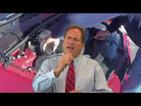 How to buy WHOLESALE cars at Auction - Online Course from the Pros.