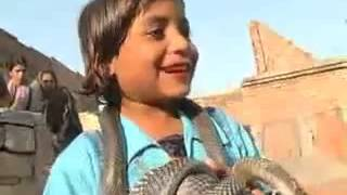 Little Girl Playing With Dangerous Snakes Whatsapp Facebook Funny Videos