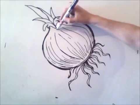 como dibujar una cebolla paso a paso - YouTube